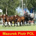 Mazurek Piotr POL 8th Place CAI- Altenfelden , Golden Wheel Trophy Golden Wheel CUP, Dressage 2nd Place